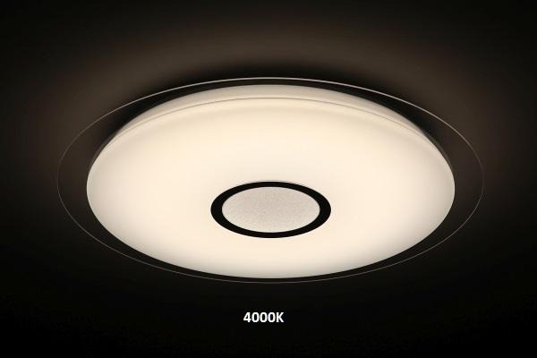 4Whole light (5)