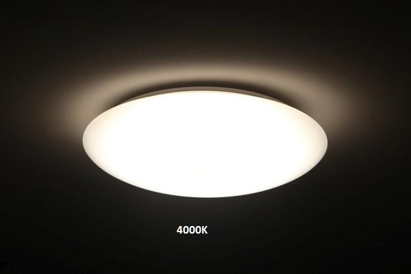 2Whole Light (2)