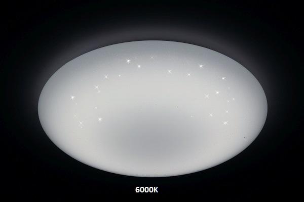 COOL WHITE (8)
